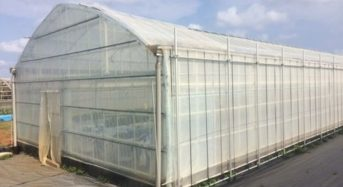 東京農大と日立トリプルウィン、炭素繊維強化プラスチックを活用した植物工場の実証実験へ
