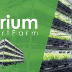 米国ベンチャーAEssenseGrows社、植物工場による光源コスト・収量計算ソフトを開発
