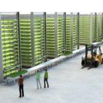 植物工場からAIロボット開発まで、ノルウェーの注目ベンチャー企業