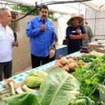 ベネズエラ「都市型農業計画2018」公表。政府主導による小規模農場が人口の20%の食料生産へ