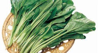 価格高騰から一転、野菜の供給過多へ。らでぃっしゅ、増量した野菜還元商品を提供