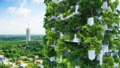 イラン、垂直式植物タワー構想を発表。植物工場など農業のハイテク化へ