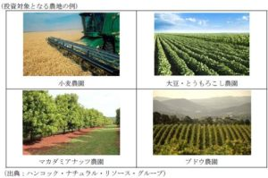 日本生命、海外農地投資ファンドへ100億円の投資。農作物の売上・農地リース料によるリターンに期待