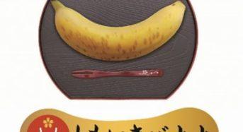 ともいきBIO、バナナ苗に「凍結解凍覚醒法」処理により国産バナナ栽培が可能に
