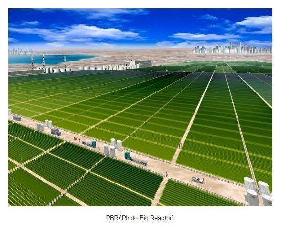 三菱商事、藻類スピルリナ由来タンパクの生産・食品開発のタベルモへ出資