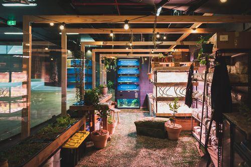 シドニーの地下駐車場にて植物工場・都市型農業を開始。「Mirvac社」による不動産開発の新たな挑戦