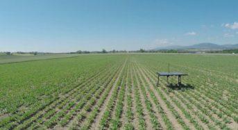 スイスのベンチャー、AI技術を導入した農薬散布マシーンを開発