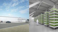 三菱ガス化学、植物工場を運営する合弁会社をファームシップと設立