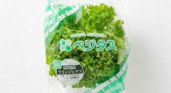 スプレッド、家庭用サラダに最適な植物工場野菜「フリンジレタス」を販売開始
