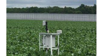 システムデザイン開発、クラウド型スマート農業サービスにBIGLOBEモバイルを採用