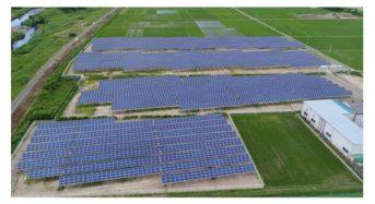 富士興産、太陽光発電所の売電開始。ミョウガ栽培とのソーラーシェアリング