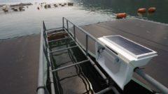 水産養殖の技術系ベンチャー「ウミトロ」9.2億円の資金調達を実施