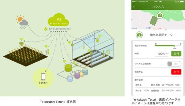PSソリューションズ、AIを活用した栽培支援サービスを開始。温室ハウス内の環境制御とも連携