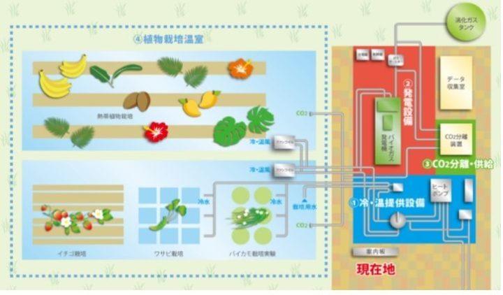 新潟県、下水からの資源・エネルギーを活用した環境保全型農業へ。イチゴやワサビ、パッションフルーツ栽培も