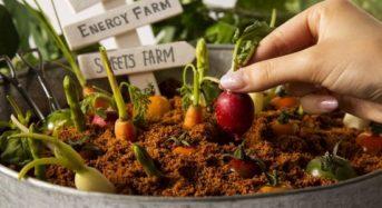 グランドプリンスホテル新高輪、テーブル上で収穫体験・バター作りなどの体験型サービスを提供