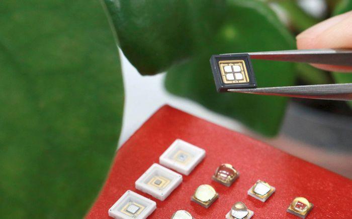 LGイノテックの植物工場用LED、30種類の植物に最適な製品群を構築・グロバール市場へ