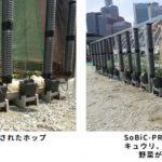 大阪駅前再開発エリア、食の安全や防災のためのコミュニティ創り。ビールのホップも栽培