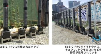 大阪駅前再開発エリア、食の安全や防災のためのコミュニティ創り。ビール原料のホップも栽培