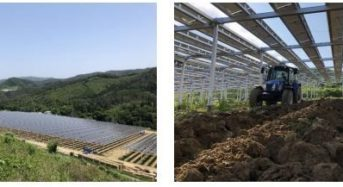 東急不動産など、メガソーラーシェアリング発電所が完成。麦の栽培と太陽光発電を両立