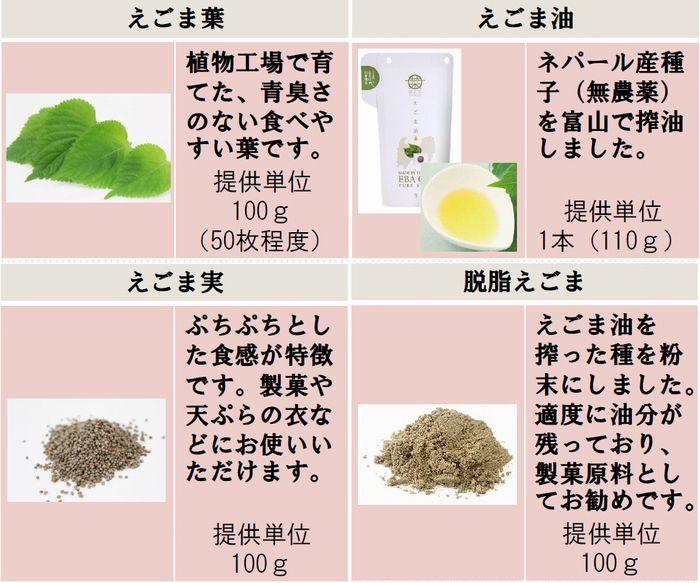 富山市による植物工場産「エゴマ」などのPRにFacebook、インスタ活用