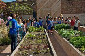 NYブルックリン、約3.5億円を投じてコミュニティー・ガーデンを整備