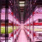 英国政府、約28億円をかけてハイテク農業技術を公募。革新的なイノベーション支援へ