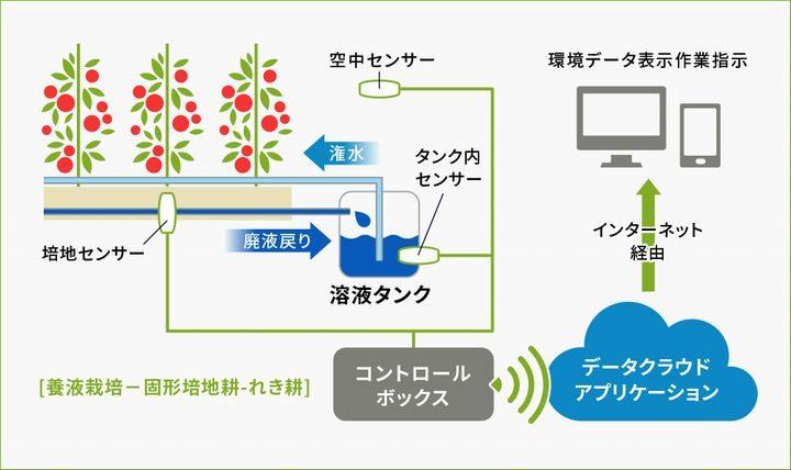 丸紅、施設園芸向けのAIを活用した栽培指導「プラントライフシステムズ」へ出資