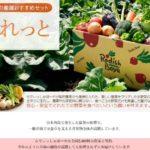 らでぃっしゅぼーや、市場価格高騰を受け、葉野菜などの特集販売ページを新設