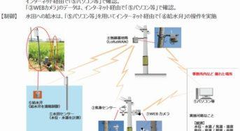 中部電力とIIJ、ICTを活用した稲作支援に関する実証実験を開始