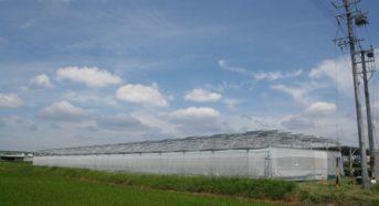 スマートブルー、営農型発電にてコミュニティ型次世代モデル農場の運営を開始
