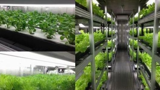 [PR] 最大80-90%オフにて、最新の中古植物工場が入手可能