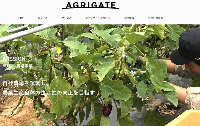 旬八青果店を展開するアグリゲート、三井物産との資本業務提携へ