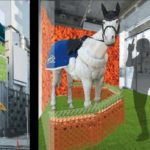JRA日本中央競馬会、「馬」と「ニンジン」をテーマにした体験型スポットを限定オープン
