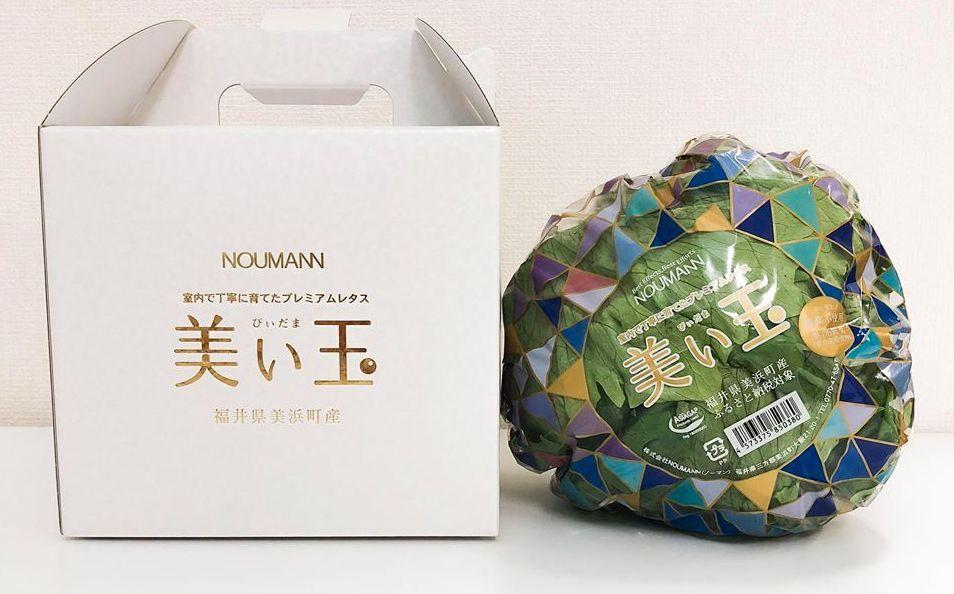 NOUMANNによる植物工場・結球レタス「美い玉」、野菜ソムリエサミットにて銀賞受賞