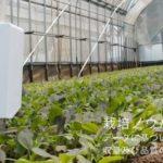 プリンテッド・エレクトロニクスを用いた土壌センサーを開発するSenSprout、総額1.45億円の第三者割当増資を実施