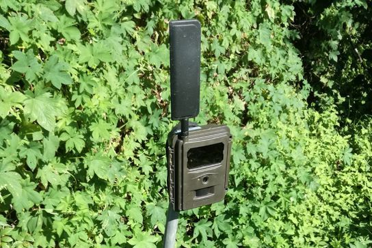 ベジタリア、高速LTEデータ通信対応の屋外乾電池式IoTカメラを提供開始