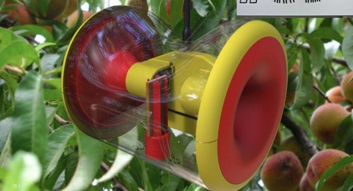 オーストラリア、果樹用スマート捕虫器ベンチャーが約1.4億円の資金調達へ
