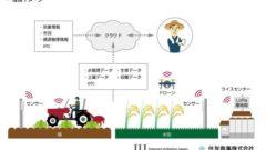 IIJと住友商事、先進農業に関する業務提携。各種センサーを導入した農作業の効率化へ