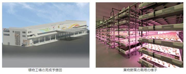 運輸業のセイノー、ファームシップと連携して完全人工光型植物工場を稼働