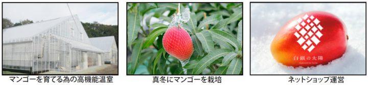 アグリカルチャークラブ、モデル農場見学「真冬の北海道でマンゴーを栽培」