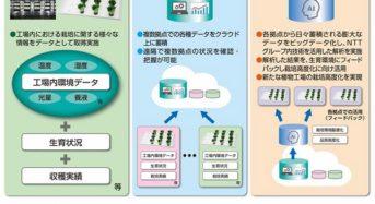 スプレッドとNTT西日本、植物工場のビッグデータ解析に関する共同実験を開始