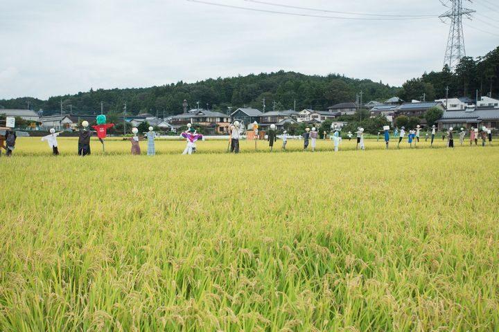 JA共済、東京・都市型農業をVR映像にて紹介。スカイツリーを背景にした温室ハウスも紹介