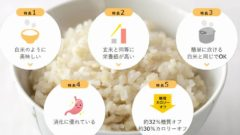 東洋ライス「金芽ロウカット玄米」継続摂取により脂質異常が改善