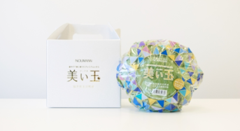 NOUMANN、結球「美い玉」レタスなどの植物工場野菜「クックパッドマート」で販売