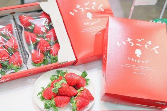 佐賀県の新品種「いちごさん」東京の大田市場に初出荷。18haで900トンの生産量を見込む
