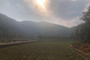 マイファーム、自然教育や農業関連サービスの知見を海外へ。中国に現地法人を設立