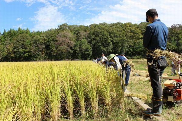 奈良県初・奈良市東部地域が「どぶろく特区」に認定。農家民宿や農園レストランも推進