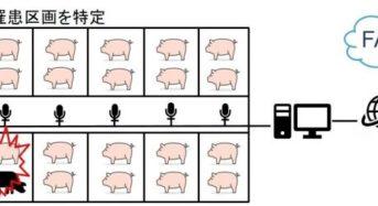 Hmcomm、AIディープラーニングによる豚の異常音を検知。家畜の異変を早期発見へ