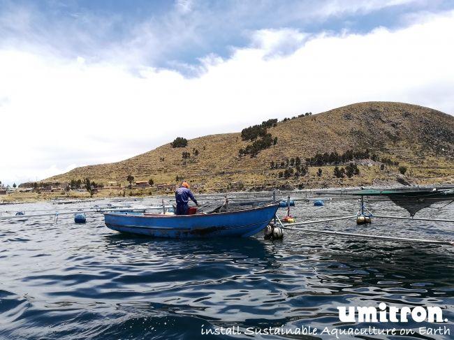 ウミトロン、ペルーで総額2.3億円のサーモントラウト向けIoTプロジェクトを開始