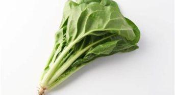 Oisixによる野菜トレンド予測。1位は「うしおな」に続き、カリフラワーやブロッコリーが続く